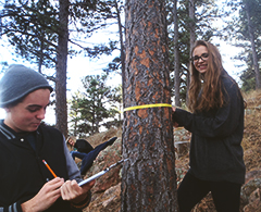 Students in forest.