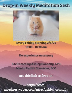 Drop-in Weekly Meditation Flyer Spring 21