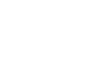 Early 2019- Construction began